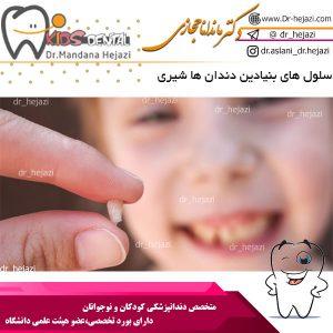 سلول های بنیادین دندان ها شیری
